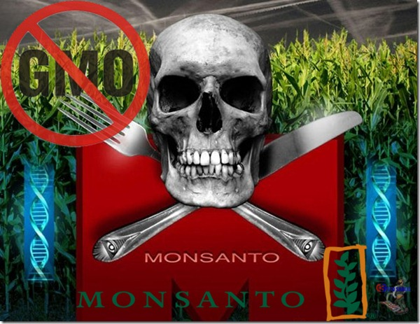 Monsanto Srbija