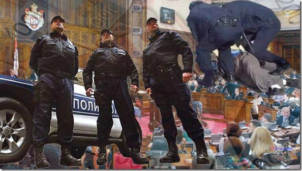 Policijska drzava