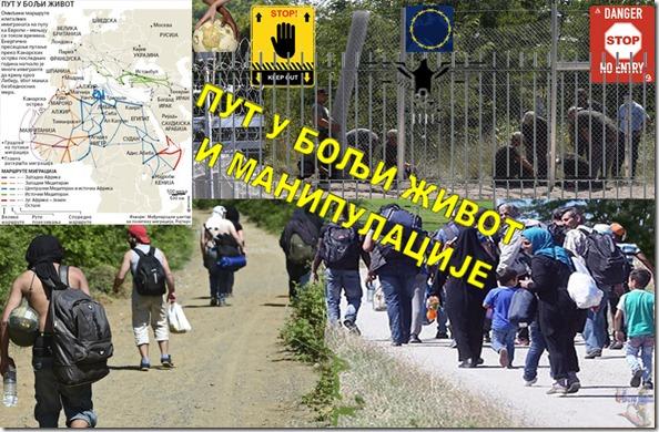 ARAPSKO PROLECE, AMERIKA, GLAD, EVROPA, STRAH-5