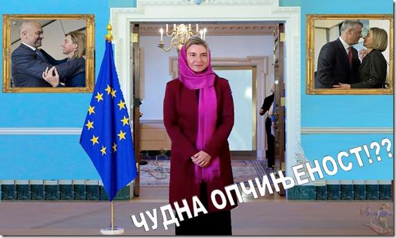 CUDNA OPCINJENOST VISOKE PREDSTAVNICE EU1