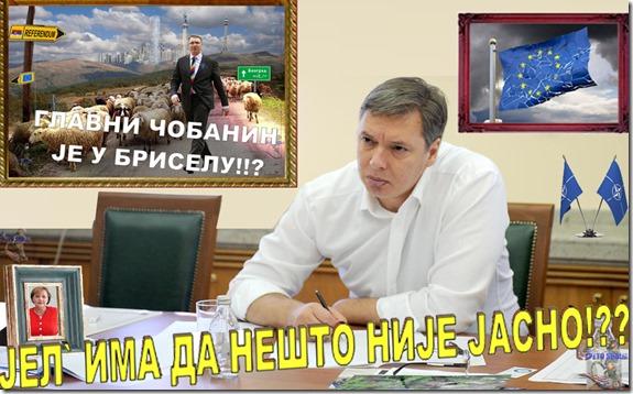 DRZAVNIK KOME JE SVE JASNO1